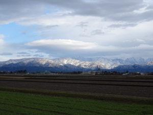入善町の田んぼ越しに眺める北アルプスの山並み