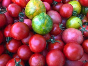 トマトもいろんな品種を栽培